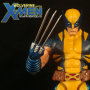 Wolverine and theX-Men