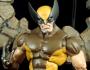 Wolverine (Brown Costume)