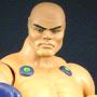 Punch-Up (MOTUC Original)