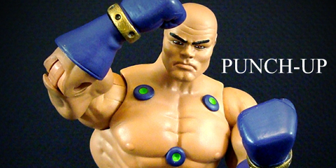 punch240