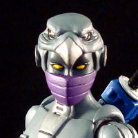 NIGHTBIRD (MOTUC/Transformers Concept)