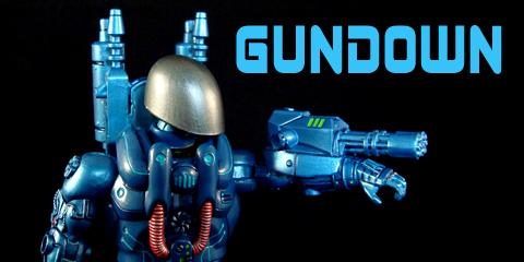 gun240