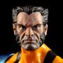Wolverine (Jim LeeStyle)