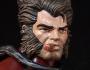 Wolverine (Outback X-Men)